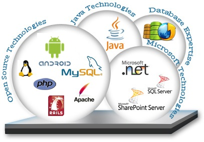 software development, android, ios, ERP, CMS, CRM, mobile app, website portal,